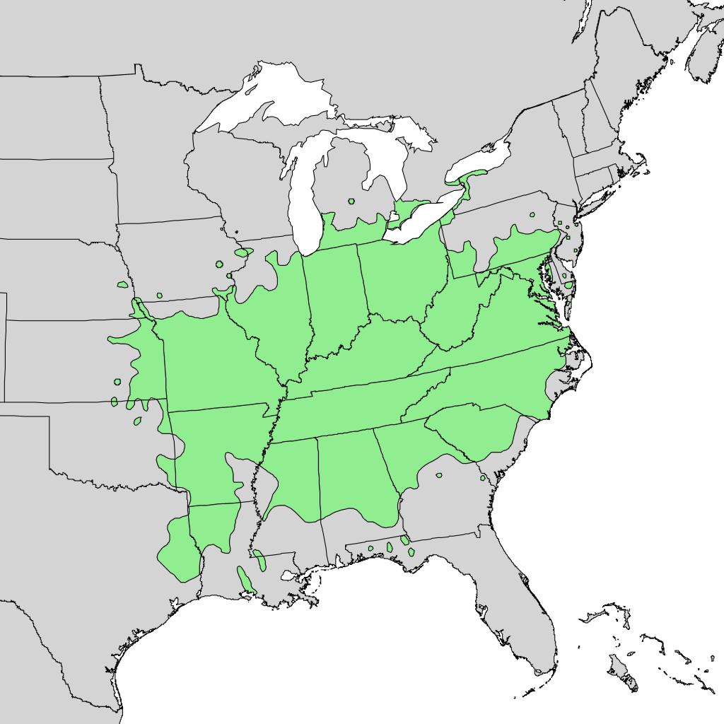 Oorspronkelijk verspreidingsgebied van pawpaw